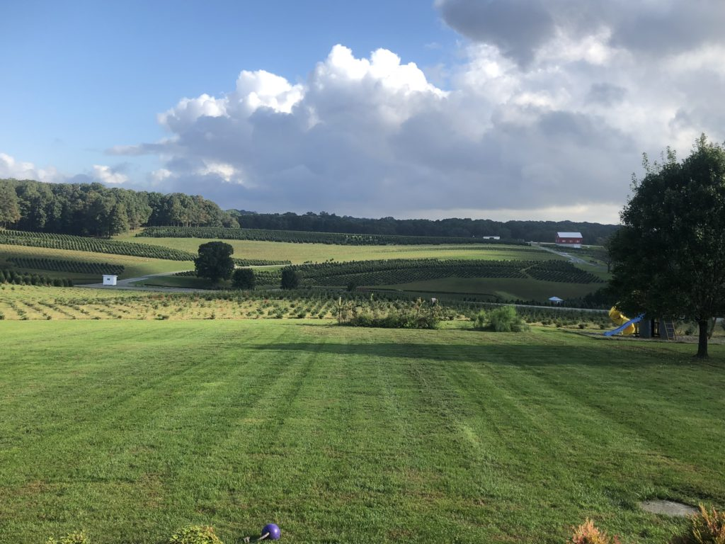 Nature Field - Pine Valley Farms